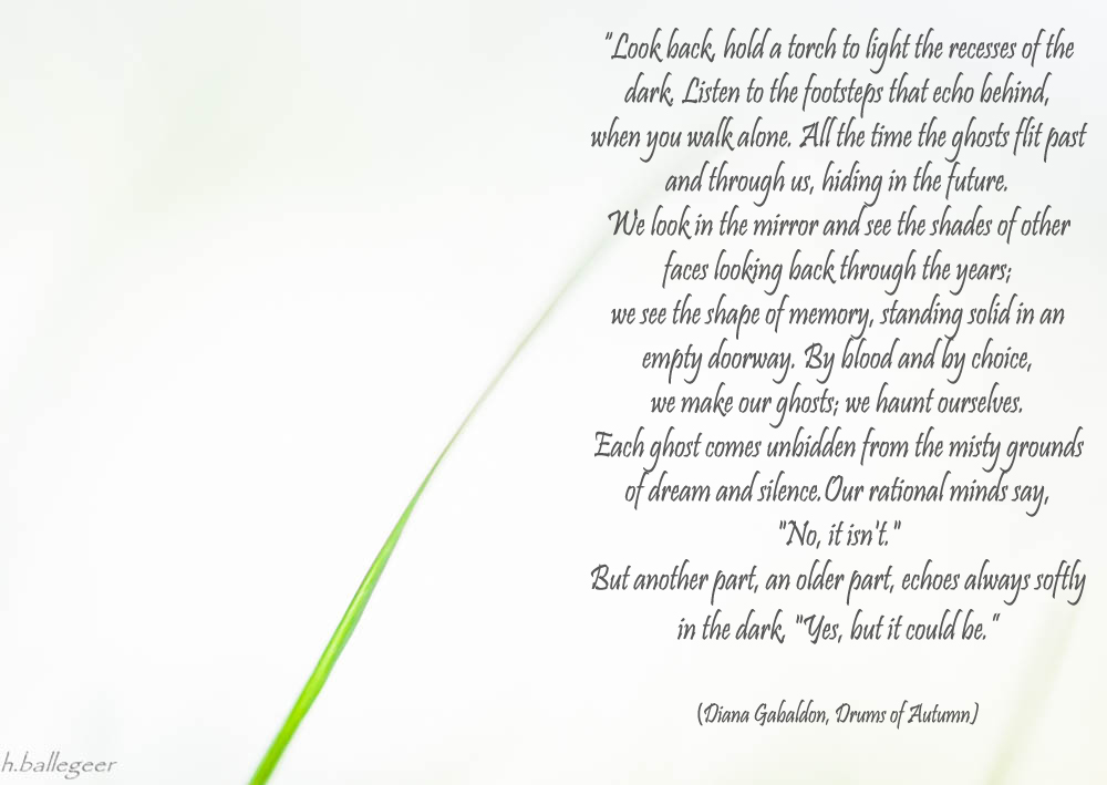 Quotes of Diana Gabaldon