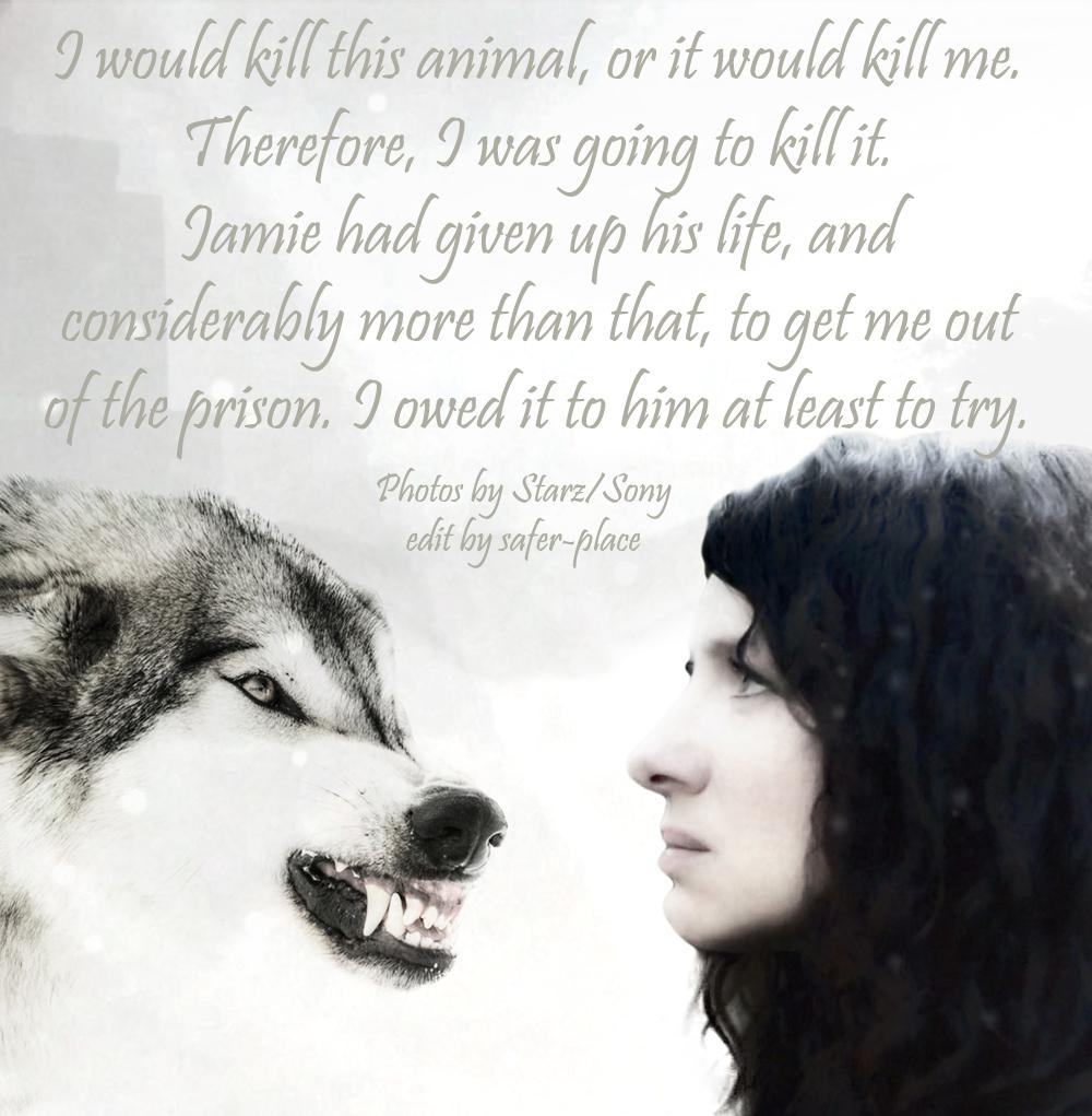 wolf_new